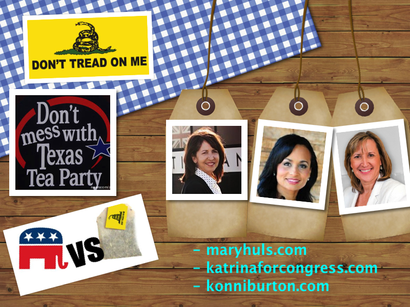 Texas Tea Party Candidates