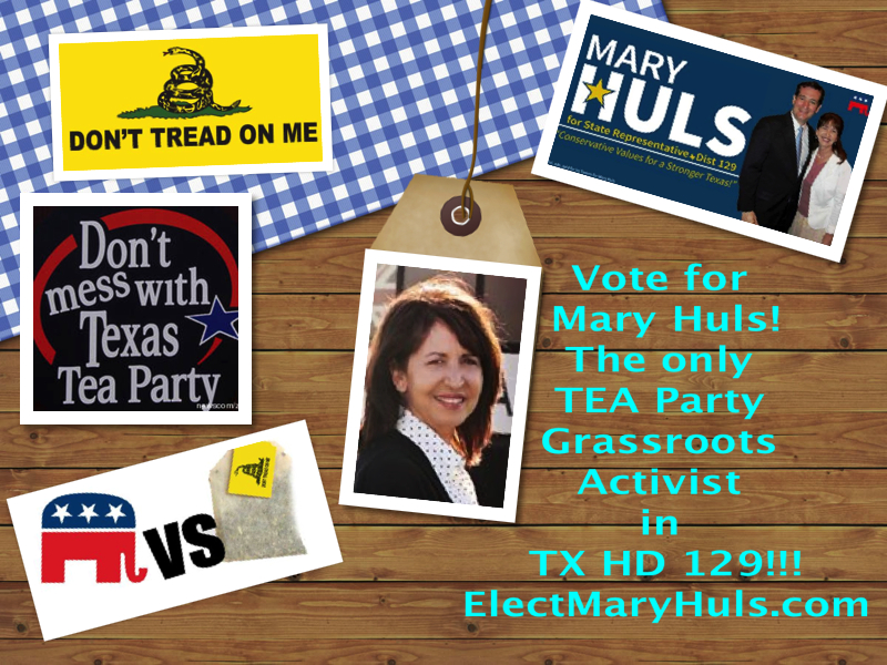 State Representative HD 129. The only TEA Party Grassroots Candidate